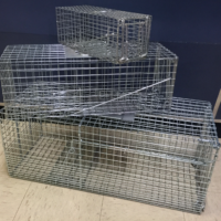 Animal Trap (3 Piece)